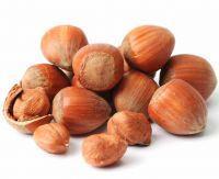 Quality Processed dried hazelnut at very good prices