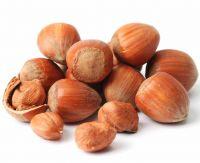 Raw Hazelnuts Kernels in Shell, Organic Hazelnuts, Blanched Hazelnuts.