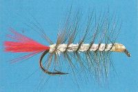 Streamer Fishing Flies