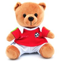 Popular Design Plush Teddy Bear for Children