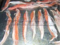 Frozen Atlantic Salmon Belly  3 cm up (1 FCL)