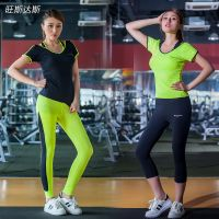 New Womens Three Pieces Yoga Running Sport wear High Waist Leggings Gym Fitness sets