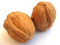 Walnuts , Walnut in Shell and Walnuts Kernels