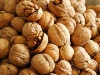 Walnut Without Shell / Walnut inshell