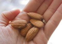 Raw Organic Almond Nuts
