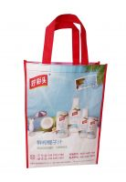 Laminated Nonwoven Shopping Bag/ PP Woven Shopping Bag/ Wholesale Cheap Shopping Bag