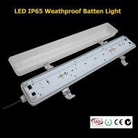 LED IP65 weatherproof anti-corrosive batten light vapor tight fixture