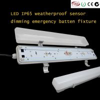 LED IP65 weatherproof anti-corrosive batten LED emergency sensor vapor tight light