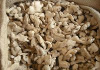 Dried Ginger Whole Peeled