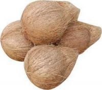 Semi Husked Coconuts - Indian