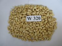 Premium Quality Raw Cashew Nuts