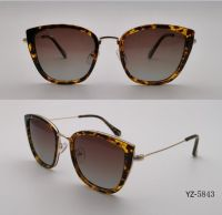 Eyewear with High Quality Sunglasses Customized OEM (YZ-5843)