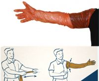 Disposable pe arm length examination glove