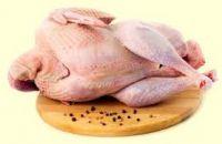 fresh frozen halal turkey meat