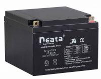 Lead Acid Backup Power UPS Battery 12V 24AH