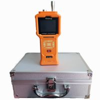 Portable gas detector with inner pump