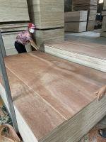 9MM package grade bintangor plywood