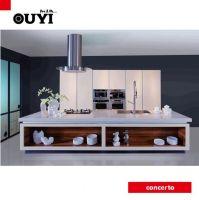 kitchen cabinet with E1 standard kitchen furniture