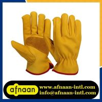 Driving Gloves/Leather Gloves