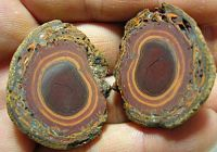 BOULDER MATRIX OPAL ROUGH - SPLIT & PAIRS