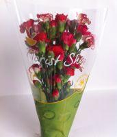 Select Mini Carnation