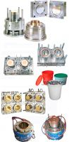 other mould/mold
