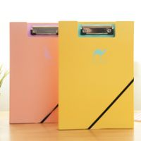 PP / Plastic File Folder For A4 Size Papers