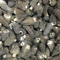 Dried Morel Mushroom 3-5 CM without Stem