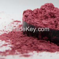 Wholesale bulk chameleon series pearl pigment for automotive industria