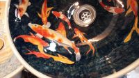 Koi carp wash basin.