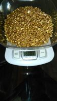Gold Nuggets/Bars, Gold dust