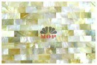 mesh gold sea shell tile wall mosaic