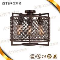 Personality design indoor E27*10 modern wrought iron Pendant light