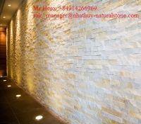 Thin veneer stone from Vietnam