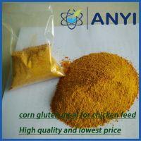 Corn Gluten Meal Chicken Feed for animals