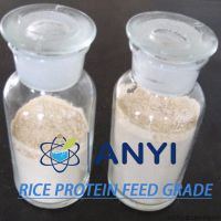 Rice Protein powder in feed additives