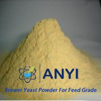 Worth buying high protein feed grade yeast protein powde