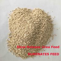 plastered starch urea Ruminates Feed with 200% crude protein
