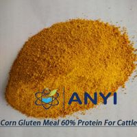Powdery corn gluten meal instead in fish meal