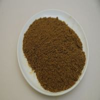 Cattle Feedstuff additives meat bone meal 55% protein