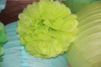 Party or Wedding Decorations Beautiful Wholesale Tissue Paper Poms
