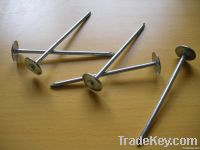 Iron Roofing Nail