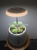 home decoration smart garden green pet
