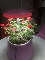 Plastic hydroponics flower Pot