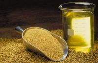 Soybean Oil,Sunflower Oil Refined and Crude, Canola Oil, Vegetable Oil, Olive Oil