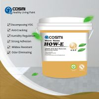 Water Based Diatomite Paint