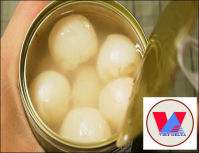 Canned Lychee (Tropical fruit) exporting from Vietnam for best selling/WhatsApp +84962946460
