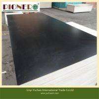 construction plywood/ film faced plywood/building plywood