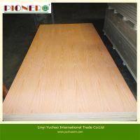 pine/bintangor/okoume/birch/ash/oak  plywood
