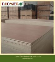 3mm 5mm 7mm 9mm 12mm marine Plywood for Furniture